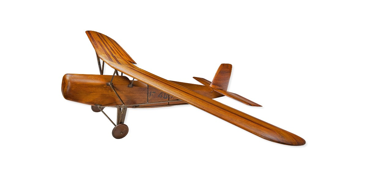 "The Farman F 480 ""Alizé"""